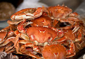 Boiled crabs — Stock Photo