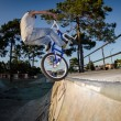 BMX Bike Stunt tap — Stock Photo #12436537