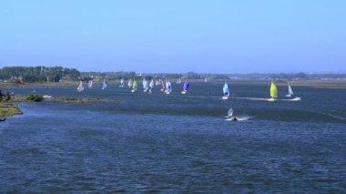 Sailboats in regatta — Stock Video