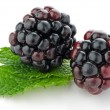 Stock Photo: Ripe fresh blackberry