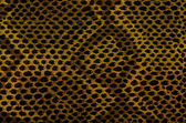 Snake Skin Leather Texture — Stock Photo