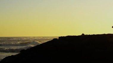 Surfer at sunset — Stockvideo