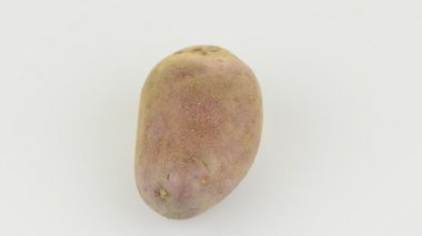 New potato tuber rotating on white background.