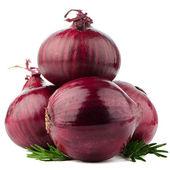 Cebolla roja — Foto de Stock