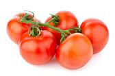 Red ripe tomato — Stock Photo