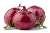 Rote zwiebeln — Stockfoto
