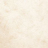White leather texture — Stock Photo