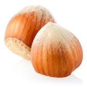 Three hazelnuts — Стоковое фото