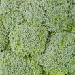 Brocolli background — Stock Photo