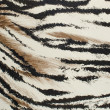 Tiger skin artificial pattern — Stock Photo #20016015