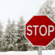 Stop road sign — Stock Photo #22065805
