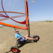 Stock Photo: Francisco Coston landing kite