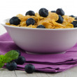 Stock Photo: Cereal and blueberries