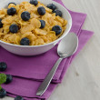 Cereal and blueberries — Stock Photo #26015933