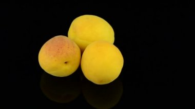 Three apricots — Stock Video