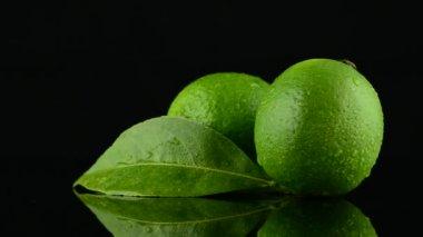 Fresh green limes — Stock Video