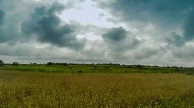 Nuvens negras acima de campo — Vídeo Stock