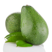 Avocados on white — Foto Stock