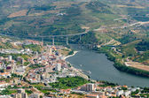 Regua, vineyars in Douro Valley — Stock Photo