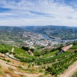 Panoramic view over River Douro — Foto de Stock