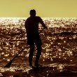 Silhouette paddle board surfer — Stock fotografie