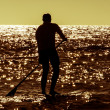 Silhouette paddle board surfer — Stock Photo