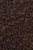 Brown leather texture closeup — Stock Photo