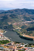 Regua, vineyars in Douro Valley — Stock Photo