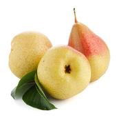 Three ripe pears — Stock Photo