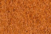 Orange carpet — Stock Photo