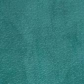 Green vinyl texture — 图库照片