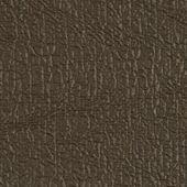 Dark brown vinyl — Stock Photo