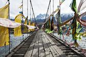 Ponte di corda — Foto Stock