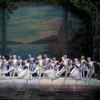 The classic ballet--swan lake — ストック写真