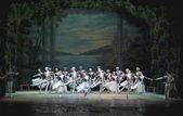 El ballet clásico, lago de los cisnes — Foto de Stock