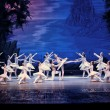 The classic ballet--swan lake — Stock Photo