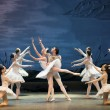 Stock Photo: Classic ballet--swlake