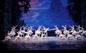 Il balletto classico - il lago dei cigni — Foto Stock
