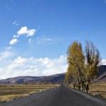 Highland road — Stock Photo #35576243