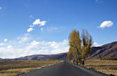 Highland road — Stock Photo