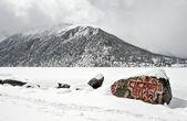 Sneeuwlandschap — Stockfoto