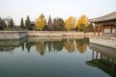 El chino antigüedad real jardín — Foto de Stock