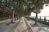 The chinese ancient times royal garden — Stock Photo