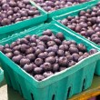 Blueberries - Stockfoto