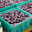 Blueberries - Foto de Stock