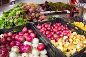 Onions at Market — Stock fotografie