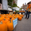 Pumpkin Sale NYC — Stock Photo