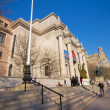 Постер, плакат: American Museum of Natural History NYC