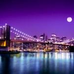 NYC Brooklyn Bridge and Skyline — Stock Photo #19120747