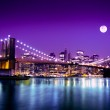 NYC Brooklyn Bridge and Skyline — Stock Photo #19120747
